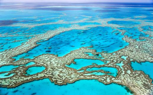 The Great Barrier Reef, Queensland, Australia